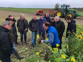 Een bijeenkomst in Brabant met de Koolstofboeren. Foto door Wico Dieleman (ZLTO)