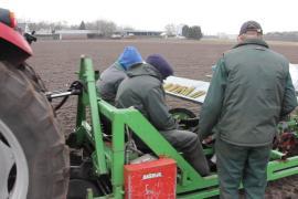 Eerste aanplant houtige biomassa in Gilze-Rijen