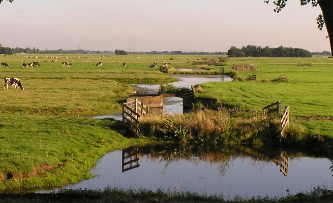deltaplan agrarisch waterbeheer